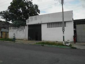 Galpon - Deposito En Venta En Valencia, Lizandro Alvarado, Venezuela, VE RAH: 17-3817