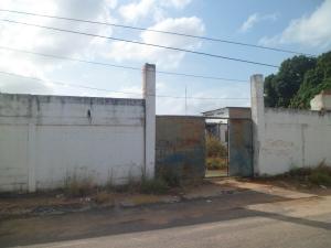 Terreno En Venta En Ciudad Bolivar, Paseo Heres, Venezuela, VE RAH: 17-3962