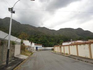 Terreno En Venta En Maracay, El Castaño, Venezuela, VE RAH: 17-3913