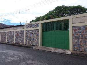 Casa En Venta En Guacara, Yagua, Venezuela, VE RAH: 17-5648