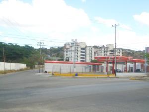Terreno En Venta En Barquisimeto, Via El Ujano, Venezuela, VE RAH: 17-4004