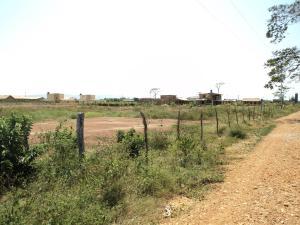 Terreno En Venta En Chichiriviche, Flamingo, Venezuela, VE RAH: 17-4114