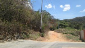 Terreno En Venta En Municipio Naguanagua, El Rincon, Venezuela, VE RAH: 17-4278