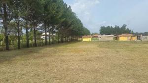 Terreno En Venta En Valencia, Sabana Del Medio, Venezuela, VE RAH: 17-4415