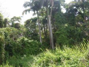 Terreno En Venta En Cabudare, Parroquia Cabudare, Venezuela, VE RAH: 17-4573