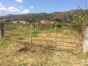 Terreno En Ventaen Municipio Bejuma, Bejuma, Venezuela, VE RAH: 17-4760