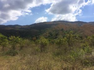 Terreno En Ventaen Municipio Bejuma, Bejuma, Venezuela, VE RAH: 17-4788