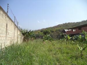 Terreno En Venta En Municipio San Diego, El Polvero, Venezuela, VE RAH: 17-5756