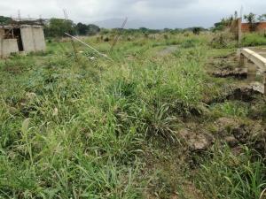 Terreno En Venta En Municipio San Diego, Yuma, Venezuela, VE RAH: 17-5678