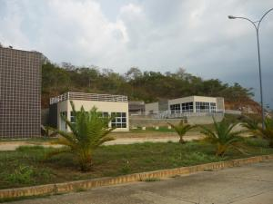 Terreno En Venta En Valencia, Guataparo, Venezuela, VE RAH: 17-5732