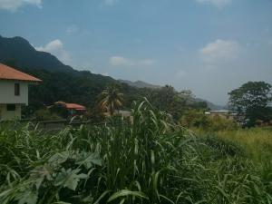 Terreno En Venta En Maracay, El Castaño (Zona Privada), Venezuela, VE RAH: 17-5975