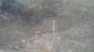 Terreno En Ventaen Guatire, El Ingenio, Venezuela, VE RAH: 17-6463