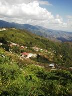 Terreno En Ventaen La Colonia Tovar, Sector Capachal, Venezuela, VE RAH: 17-3175