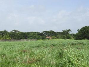Terreno En Venta En Tucacas, Tucacas, Venezuela, VE RAH: 17-6948