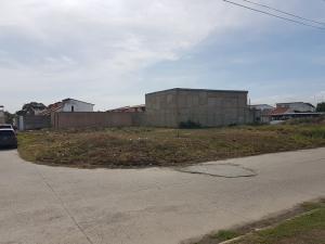 Terreno En Venta En Guacara, Ciudad Alianza, Venezuela, VE RAH: 17-7028