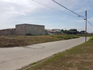 Terreno En Venta En Guacara, Ciudad Alianza, Venezuela, VE RAH: 17-7031