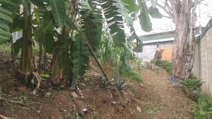 Terreno En Venta En Barquisimeto, Parroquia Santa Rosa, Venezuela, VE RAH: 17-7187
