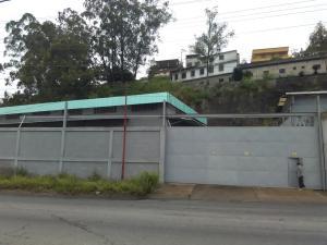 Galpon - Deposito En Alquiler En Caracas, Mariche, Venezuela, VE RAH: 17-7241