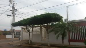 Casa En Venta En Municipio San Francisco, El Soler, Venezuela, VE RAH: 17-7316