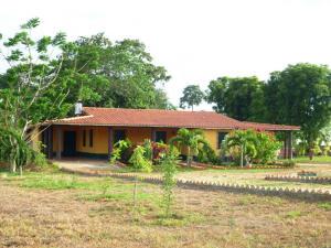 Terreno En Venta En Municipio Libertador, Parroquia Tocuyito, Venezuela, VE RAH: 17-7361