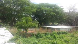 Terreno En Venta En Ciudad Bolivar, Av La Paragua, Venezuela, VE RAH: 17-7391