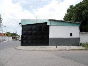 Galpon - Deposito En Venta En Guacara, Carret Guacara - San Joaquin, Venezuela, VE RAH: 17-7501