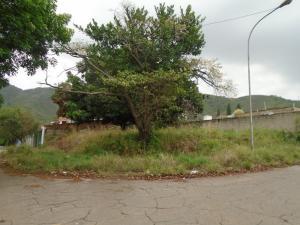 Terreno En Venta En Valencia, Lomas Del Este, Venezuela, VE RAH: 17-7753