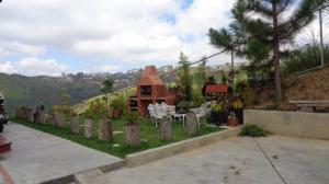 En Venta En Carrizal - Municipio Carrizal Código FLEX: 17-7628 No.11