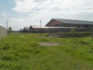 Terreno En Venta En Tinaquillo, Tinaquillo, Venezuela, VE RAH: 17-7909
