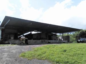 Galpon - Deposito En Venta En Municipio Libertador, Parroquia Tocuyito, Venezuela, VE RAH: 17-8434