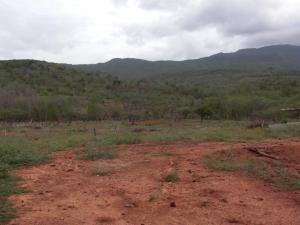 Terreno En Ventaen Coro, El Tuquecal, Venezuela, VE RAH: 17-8662