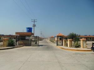 Casa En Venta En Municipio Libertador, Pablo Valley, Venezuela, VE RAH: 17-8788