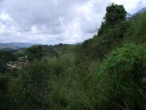 Terreno En Venta En Caracas - Corralito Código FLEX: 17-9699 No.1