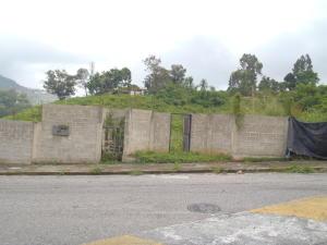 Terreno En Venta En Caracas, Monterrey, Venezuela, VE RAH: 17-10040