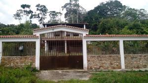 Casa En Ventaen Isnotú, Comarca San Juan, Venezuela, VE RAH: 17-10125