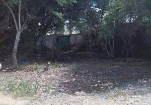 Terreno En Venta En Coro, Centro, Venezuela, VE RAH: 17-10461