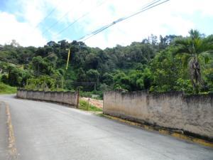 Terreno En Ventaen Caracas, Oripoto, Venezuela, VE RAH: 17-10716
