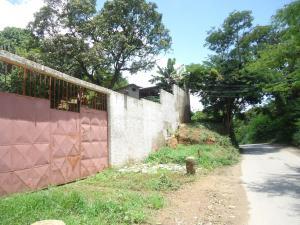 Casa En Venta En Municipio Carlos Arvelo, Guigue, Venezuela, VE RAH: 17-10815