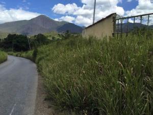 Terreno En Ventaen Tocuyo, Municipio Moran, Venezuela, VE RAH: 17-10816