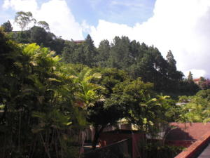 Apartamento En Venta En Caracas - La Lagunita Country Club Código FLEX: 17-11421 No.6
