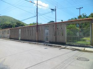Casa En Venta En Guacara, La Floresta, Venezuela, VE RAH: 17-11474