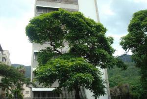 Apartamento En Venta En Caracas, San Bernardino, Venezuela, VE RAH: 17-11914