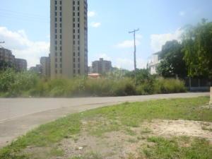 Terreno En Venta En Maracay En San Jacinto - Código: 17-12341