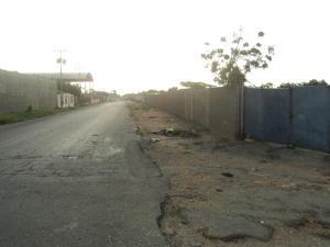 Terreno En Ventaen Punto Fijo, Creolandia, Venezuela, VE RAH: 17-12561