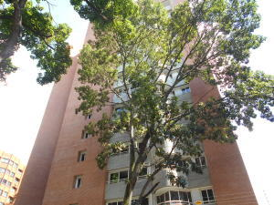 Apartamento En Ventaen Caracas, El Rosal, Venezuela, VE RAH: 17-12905