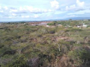 Terreno En Ventaen Barquisimeto, Parroquia Tamaca, Venezuela, VE RAH: 17-14377