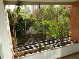 Apartamento En Venta En Caracas - Campo Alegre Código FLEX: 18-544 No.6