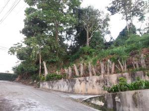 En Venta En Caracas - La Boyera Código FLEX: 18-1166 No.4