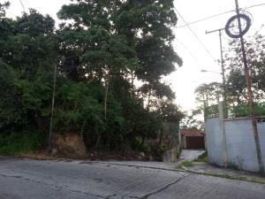 En Venta En Caracas - La Boyera Código FLEX: 18-1166 No.6
