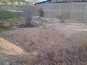Terreno En Ventaen Punto Fijo, Santa Irene, Venezuela, VE RAH: 18-1165